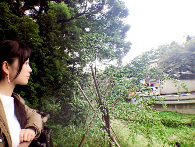 赤坂御門方面を望む