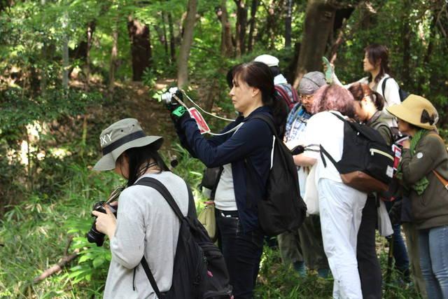 西股先生の解説を聞きながら撮影を楽しむ女性たち