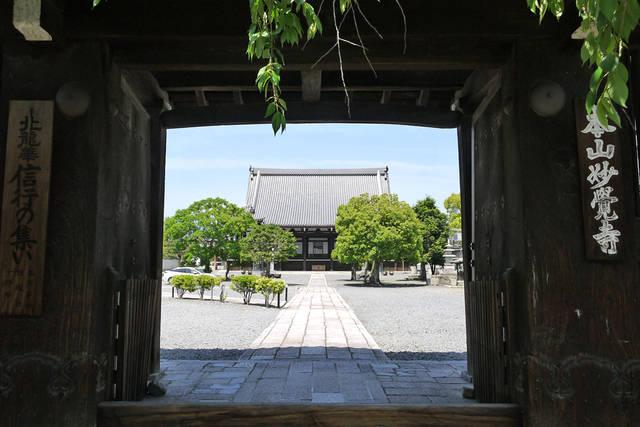 京都・妙覚寺で得度したのは道三ではなく父・庄五郎だった...