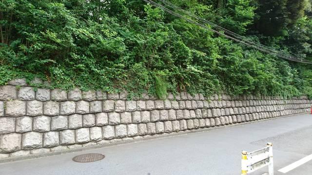 赤坂氷川神社正面門前。