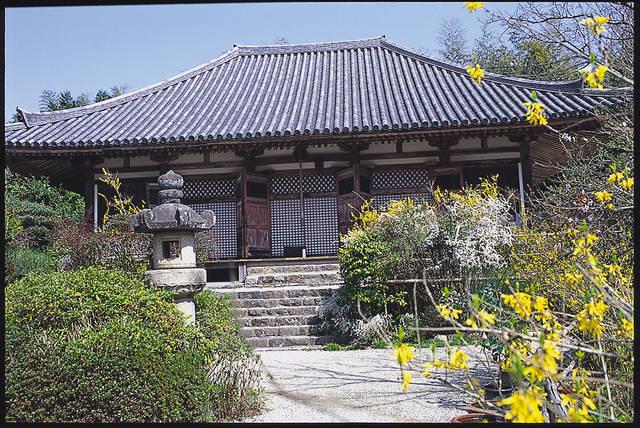 写真提供:奈良市観光協会 (22158)