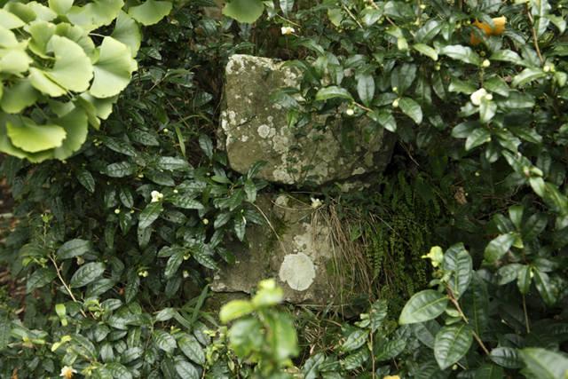 「野上行宮跡」桃配山の約500m東に位置する。
