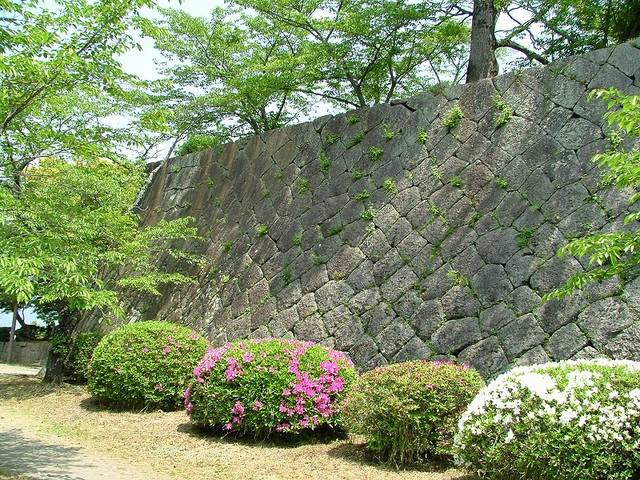 【本丸石垣】ひし形の石が積み込まれる「落とし積み」と呼...