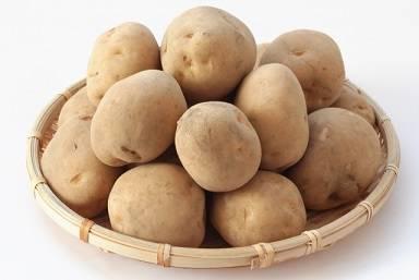 ジャガイモは江戸後期になって栽培が奨励された