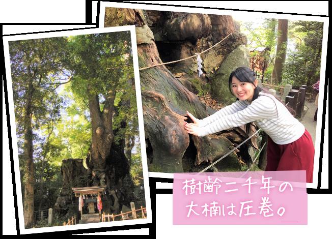 熱海歴女子旅・來宮神社