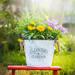 秋までの花で寄せ植えチャレンジ!たった1鉢でお庭がセンスアップ♪