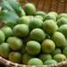 使う楽しみがある庭!梅を収穫して梅酒や梅シロップ、梅干を作ろう