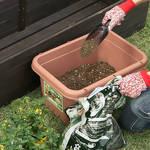 庭づくりのテクニック