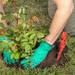 バラの庭を目指して!初めてのバラ栽培 第2回 苗の植え付けかた