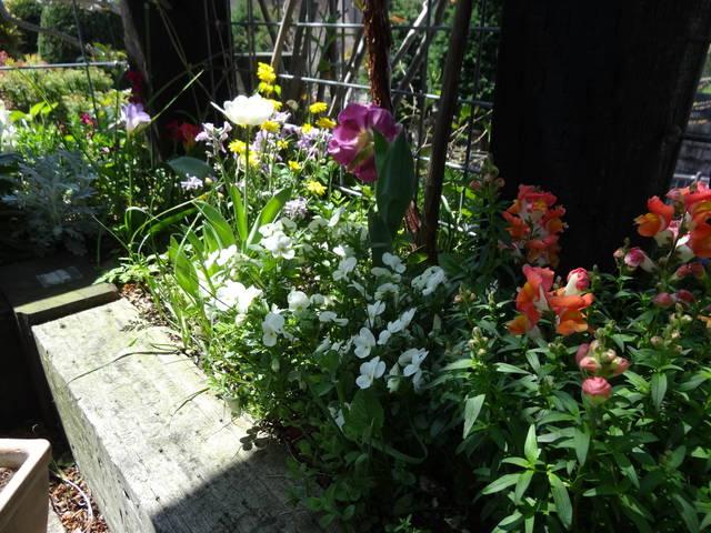枕木をうまく使った素敵なお庭