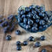 夏に収穫できるブルーベリーの育て方。来年もうまく実をつける方法も紹介