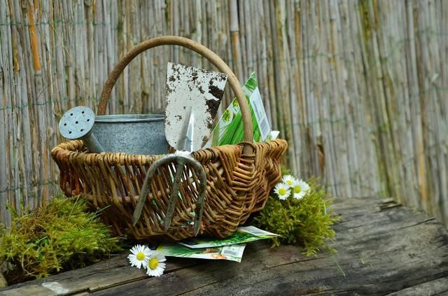 庭 ガーデニング 鍬 ガーデン · Pixabayの無料写真 (11883)