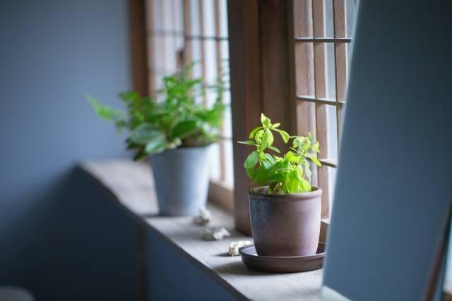 窓の風景|写真素材なら「写真AC」無料(フリー)ダウンロードOK (12248)