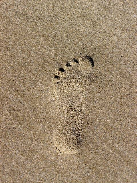 Free photo: Footprint, Tracks In The Sand - Free Image on Pixabay - 762244 (402)