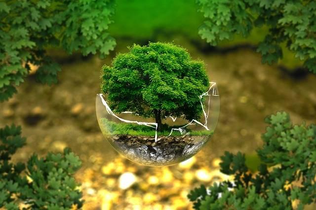 Free photo: Environmental Protection - Free Image on Pixabay - 326923 (480)