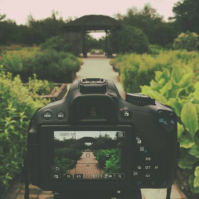 Free photo: Canon Rebel T4I, Dslr, Garden, Path - Free Image on Pixabay - 780103 (9251)