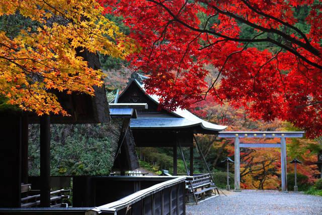 京都・地元民に人気のパワースポット巡り【蹴上・烏丸・伏見の旅】