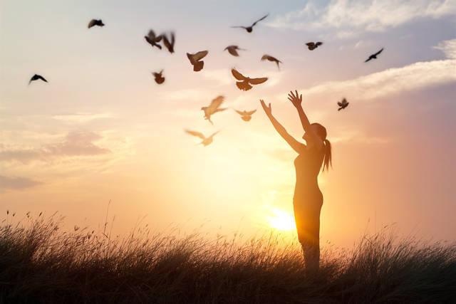 開運神社の基礎知識と種類。学んで参拝をすると運気がアップする!?