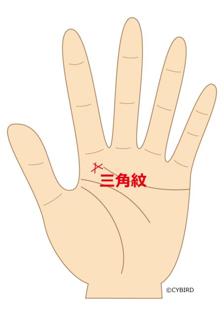 【手相占い】トライアングル(三角紋)に努力の結果が出る!