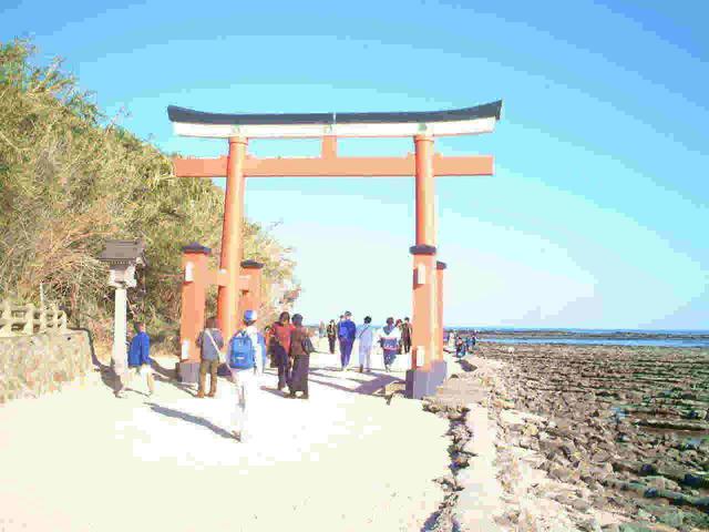 九州縁結び旅行|青島神社