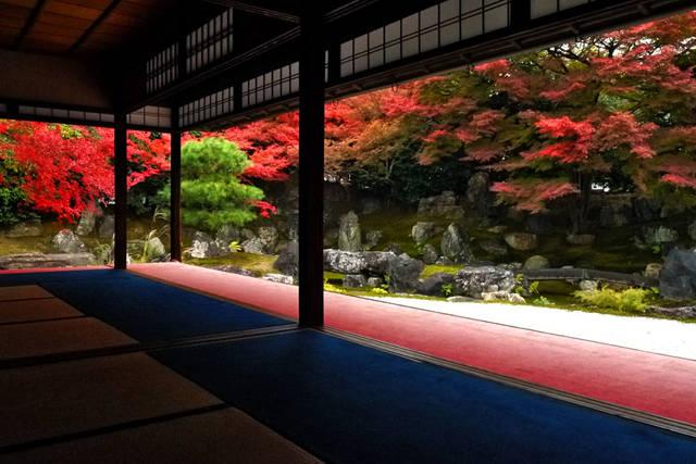 京都/パワースポット/金運/圓徳院