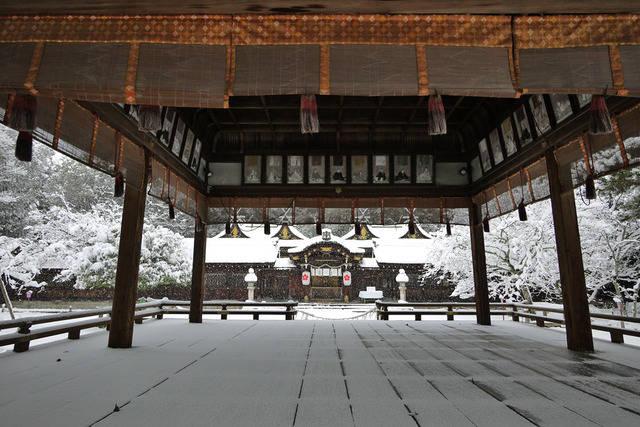 変わったおみくじ/京都 平野神社