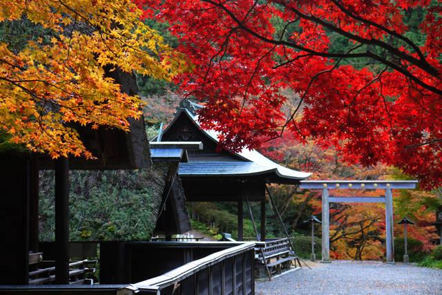 京都のパワースポット巡り 日向大神宮