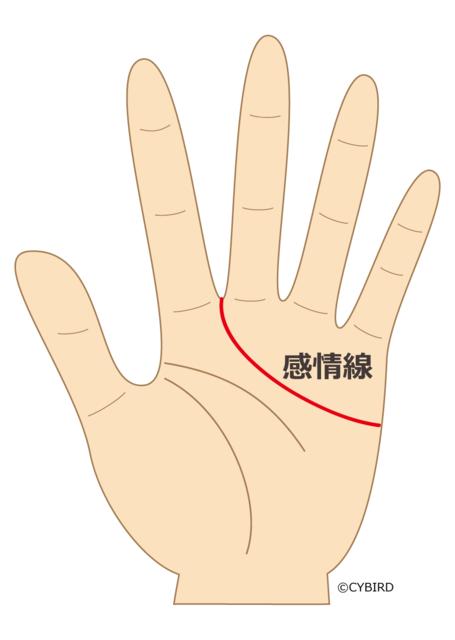 感情線が人差し指と中指の間まで入り込んでいる人