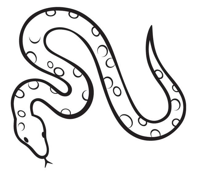 夢占い┃金運上昇の前触れ(白蛇・布袋・大黒・牛・コイン)
