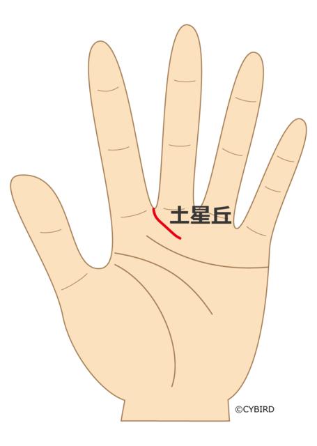 人差し指と中指の真ん中から斜めに伸びる線がある*スポーツマンの手相