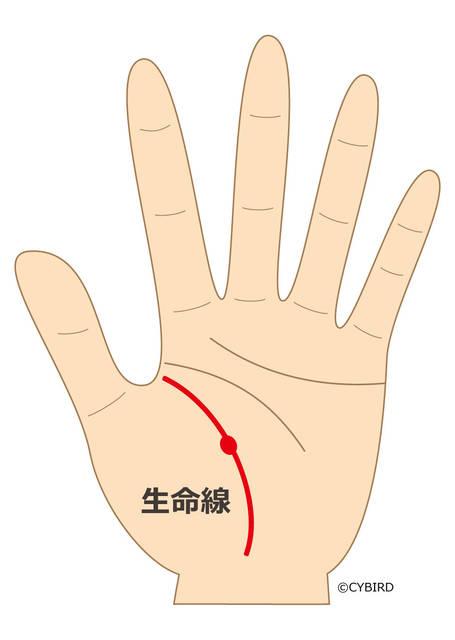 生命線の上に出る赤い点は、健康トラブルへの警告