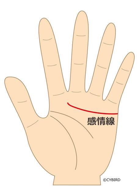 感情線が中指と人差し指の間に向かって伸びている場合