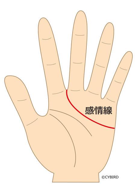 感情線が中指と人差し指の間に入り込むところまで伸びている場合