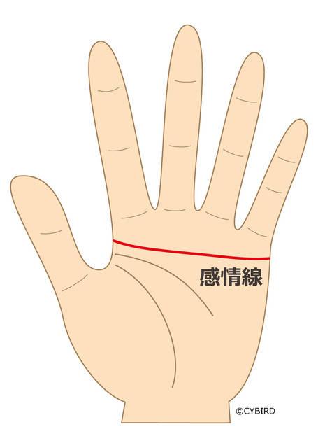 感情線が人差し指の付け根まで伸びている場合