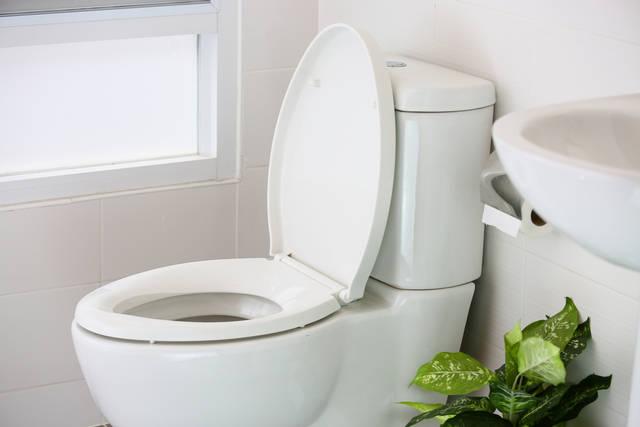 風水 トイレ インテリア