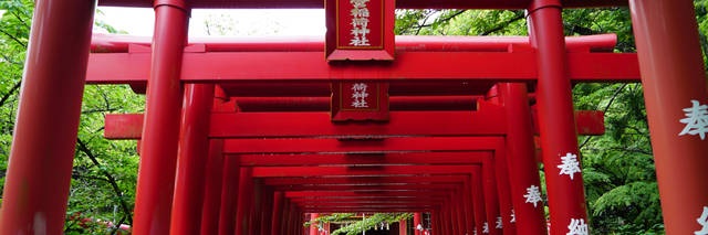 宮地嶽神社の歴史