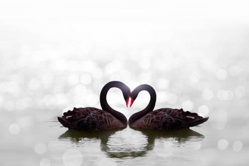 自己肯定感と恋愛の関係