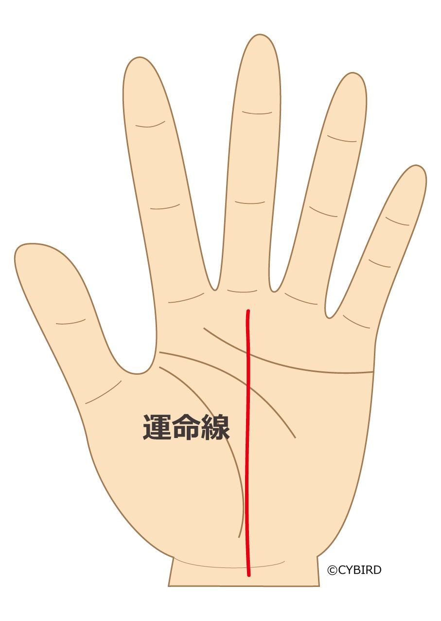 運命線が手首近くから中指付け根まで真っ直ぐに伸びている場