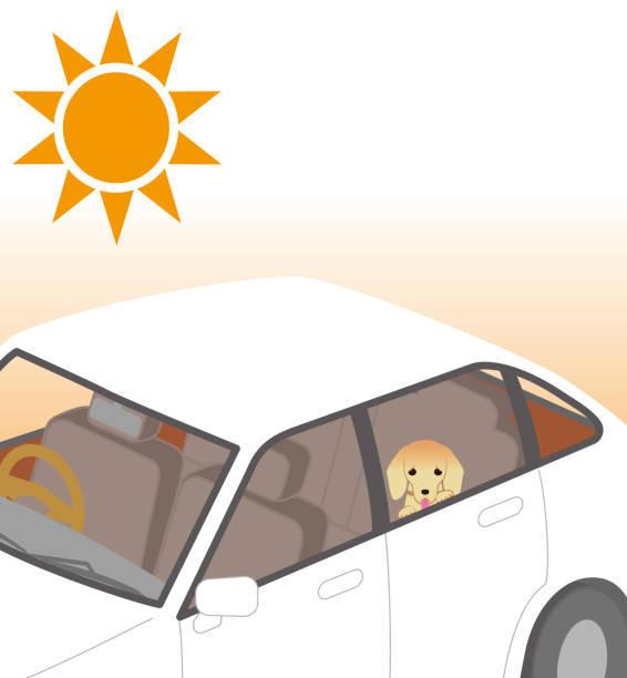 熱中症の危険性。車の中に閉じ込められた犬。