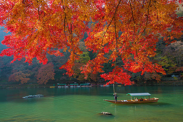 Autumn scene in Arashiyama,...