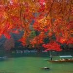 もうすぐ紅葉の季節!古都京都のオススメ紅葉スポットを紹介します!