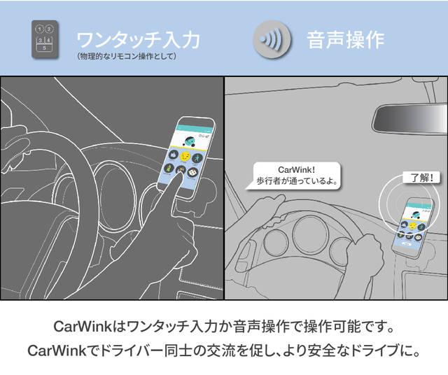 Car Wink