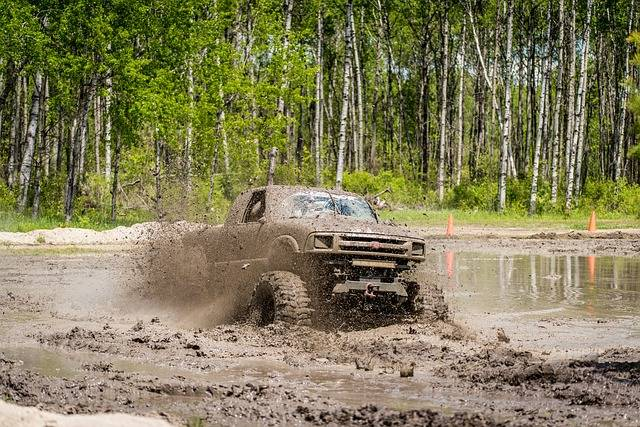 Free photo: Mud Bog, Truck, Dirty, Outdoors - Free Image on Pixabay - 2358844 (9949)