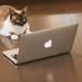 「IoT」って何? 生活のモノにインターネットが導入されると私達の働き方はどう変わる?