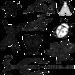 「香川照之の昆虫すごいぜ!」が10月9日に放送決定! カマキリ先生の3時間目は「オニヤンマ」