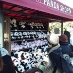 関西人が意外と感じないパンダの価値|上野のパンダ、シャンシャンに400億円に経済効果