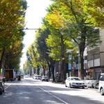 阿佐ヶ谷が『本当に住みやすい街No.1』になった3つの理由