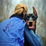 凶暴犬700頭を更生!訓練士が厳しくも愛ある訓練を「プロフェッショナル」に続ける理由に反響