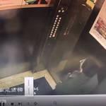 【動画あり】エレベーター内でおしっこをする少年をホラー現象が襲う
