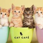 """「ねこブーム」は東京五輪を超える経済効果!政界、美術界など各国の中心""""にいる猫たちも"""